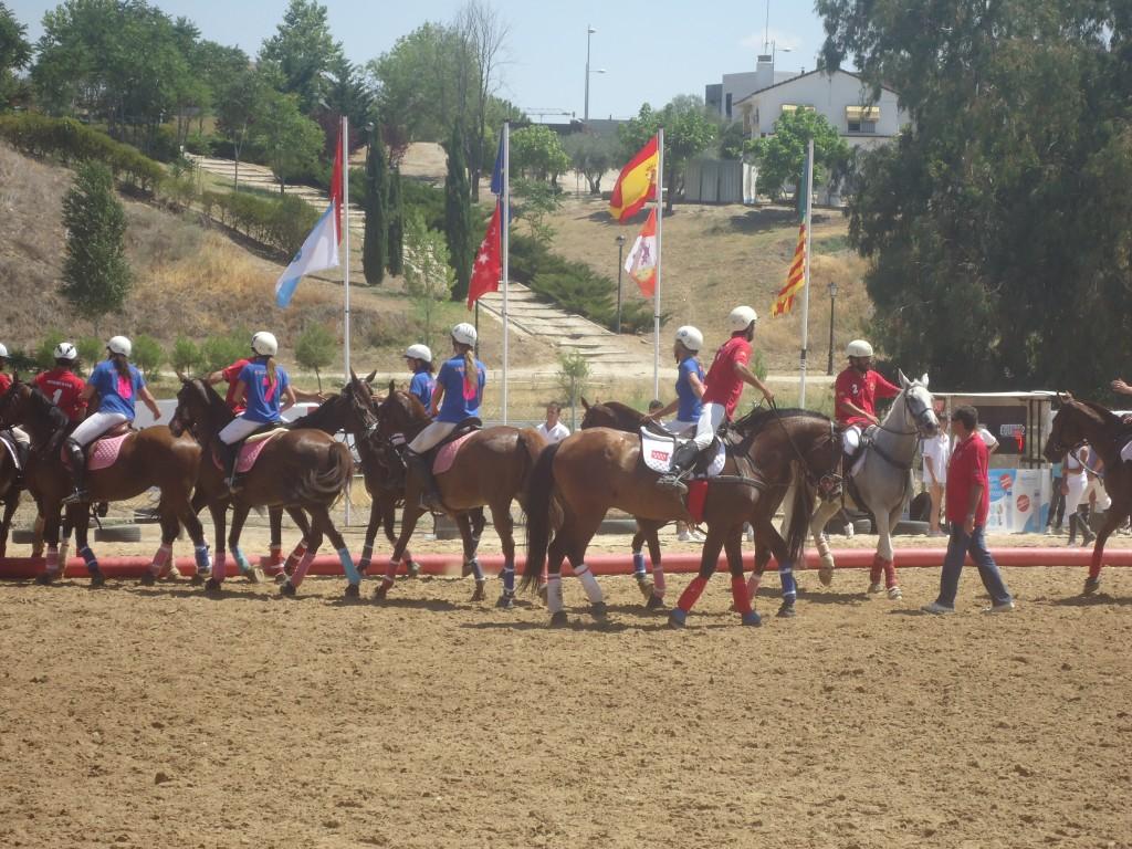 OnRetrieval y el Horseball en España